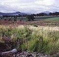 Westwards from Muir of Ord - geograph.org.uk - 617739.jpg
