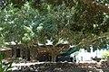 Wikimania 2011-08-07 by-RaBoe-183.jpg