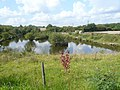 Williamthorpe Ponds Nature Reserve - geograph.org.uk - 553741.jpg