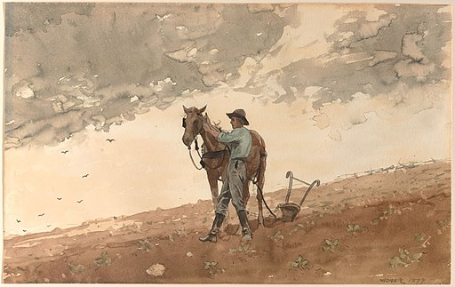 Winslow Homer - Man with Plow Horse
