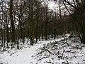 Winter in Elmstead Woods (4) - geograph.org.uk - 1655671.jpg