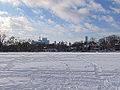 Withrow Park winter 4.jpg