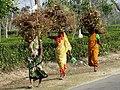 Women Bearing Loads - Outside Srimangal - Sylhet Division - Bangladesh (12903583743).jpg