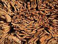 Wood 03 ies.jpg