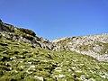 Yakoruda, Bulgaria - panoramio (3).jpg