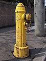 Yellow Hydrant in Sapporo.jpg