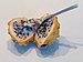 Yellow dragon fruit with spoon (50847s).jpg