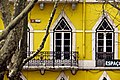 Yellow facade (5580990542).jpg