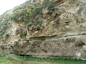 Messinian salinity crisis - The scale of gypsum formation in the Sorbas basin (Yesares member). The upward-growing cones suggest precipitation on the sea floor (not within sediments).