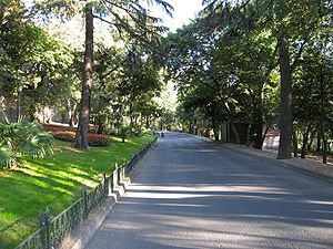 Yıldız Park - Inside Yıldız Park with the way to the porcelain manufactury