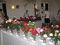 Zámek Veltrusy. Soutěžní výstava růží 2012 14.JPG