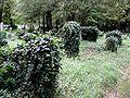 Zentralfriedhof Wien JW 026.jpg