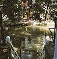 Zicht op de gracht met werf en werfkelders - Utrecht - 20414425 - RCE.jpg
