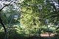 Ziffern im Wald 01.jpg