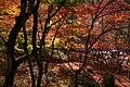 Zuihoji park15n4272.jpg