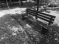 (Jardín Botánico de Quito) bench in the shade.JPG