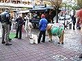 (Kiel) Полицаи наехали на мужика с ламой - panoramio.jpg