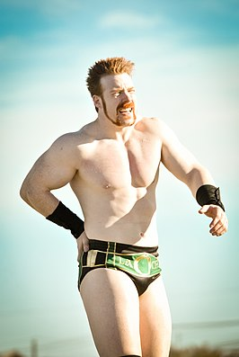 Sheamus in 2010