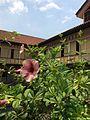 @Casa Manila - panoramio.jpg