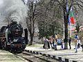 БАНКЯ APRIL 2011 - panoramio (5).jpg