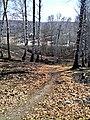 Биатлонный комплекс весной - panoramio.jpg