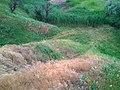 Заброшенный песчаный карьер (1940-50е годы) - panoramio (7).jpg