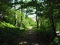 Луцький ботанічний сад «Волинь»1.JPG
