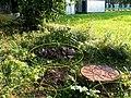 Невская Дубровка август 2011 года. Нечистоты из канализации в парке имени 330 стрелкового полка. - panoramio.jpg