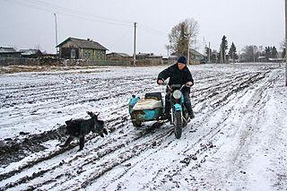District in Novosibirsk Oblast, Russia