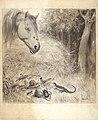 Николай Алексеевич Богатов голова лошади.jpg