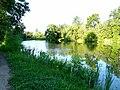 Первый пруд в Петропавловском парке Ярославля рано утром - panoramio.jpg