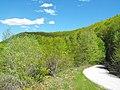 Пролет - panoramio.jpg