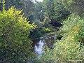 Речка - panoramio (13).jpg