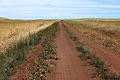 Степная дорога - panoramio (12).jpg
