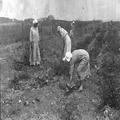 טיול קבוצתי של ציונים בגרמניה לארץ ישראל ב- 1913. כנרת (Kinnereth). צלם אלברט בר-PHAL-1619698.png