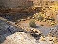 טיפת מים במכתש רמון.jpg