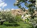 روز ۱٥ اردبهشت از درون باغ یک عکس زیبا از گوردخمه فقره قا ـ توسط خودم حمزه کاک خضری.jpg