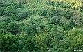 俯视雷虎嶺底部.2005 - panoramio.jpg