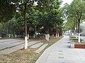 南京市奥体大街街边景 - panoramio (2).jpg