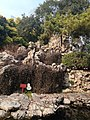 南京瞻园假山 - panoramio (1).jpg