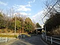 唐木田道路(3月) - panoramio.jpg