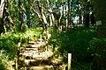 多摩川台公園 - panoramio (18).jpg