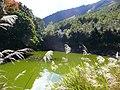天池 Heavenly Pond - panoramio.jpg