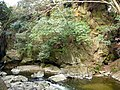 宇智川磨崖碑 Uchigawa magai-hi (buddha and sutras carved on the stone) 2011.4.11 - panoramio.jpg