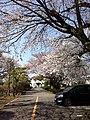富士重工 診療所付近 2014年4月 - panoramio.jpg
