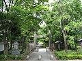 忍城の径 - panoramio.jpg