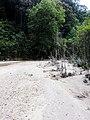 新丰县司茅坪水库云髻山自然保护区越野穿越20140628 - panoramio (1).jpg