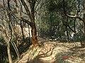 杭州. 登将台山(月岩.栖云寺.梵天寺经幢) - panoramio.jpg
