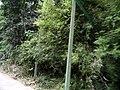桂林市冠岩景区景色 - panoramio (5).jpg