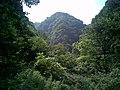 植被茂盛 - panoramio.jpg